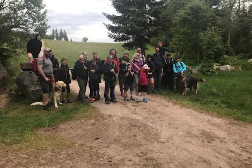 Marche du Ski Club Bonhomme Dimanche 28/06/2020